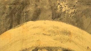 Radiohead: The Bodysnatchers