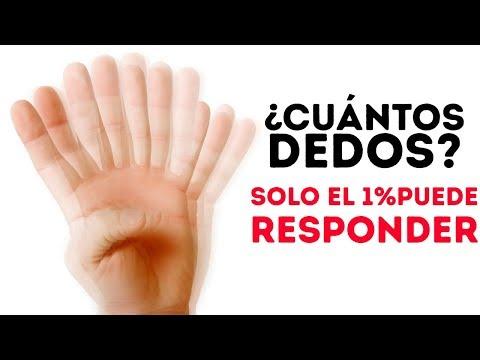 Xxx Mp4 14 ILUSIONES ÓPTICAS Y TRIVIA CON PREGUNTAS Y RESPUESTAS DEMENTES 3gp Sex