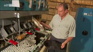 (Doku in HD) Moderne Wunder - Retrotechnik