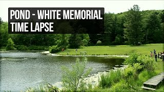 Pond - White Memorial - Litchfield, CT - Time Lapse [Copyright Free]