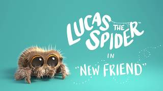 Lucas The Spider - New Friend