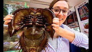 ALIEN SEAFOOD - Chinese Street Food tour in Xiamen, China   BEST Seafood in Southern China