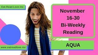 """AQUARIUS SOULMATE """"TROUBLE IN PARADISE"""" NOVEMBER 16-30 BI-WEEKLY TAROT READING"""