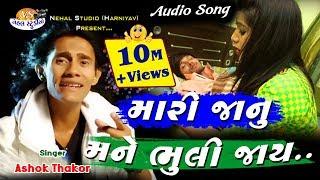 Mari Janu Mane Bhulijay ll Ashok Thakor ll AUDIO SONG.. (NEHAL STUDIO)