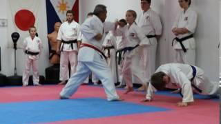 Vieanna Marr Green belt test 12-2-2016