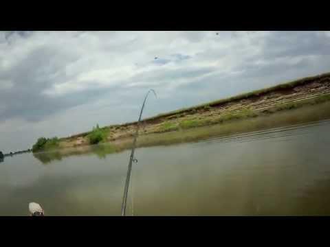 рыбалка в болхунах на острове