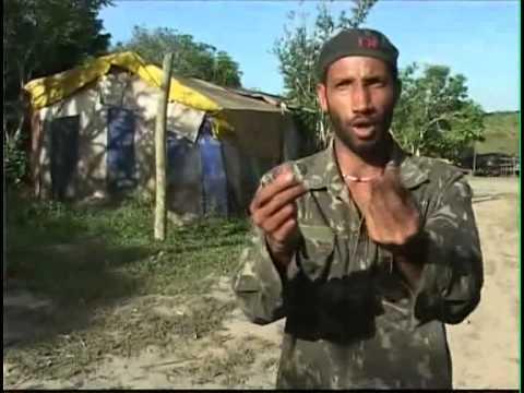 BRAZIL'S LAND REVOLUTION  (BBC WORLD TV 2004)