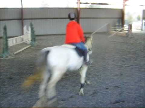 Xxx Mp4 The Girls And Horses 2009 Videos 071 3gp Sex