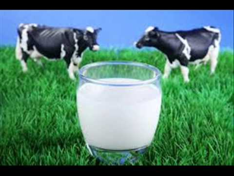 Doodh Milk mein fat ziada kesay karen  Dr Ashraf Sahibzada
