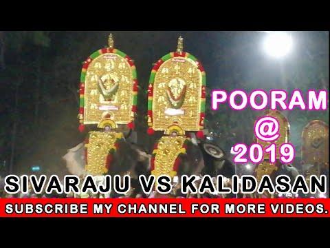 Xxx Mp4 Chirakkal Kalidasan Vs Thrikkadavoor Sivaraju Anayadi Pooram 2019 Dream Pixelz 3gp Sex