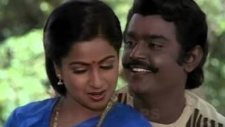 Thegam Siragadikkum-தேகம்சிறகடிக்கும்-Vijayakanth,Raadhika Kathal Melody Song