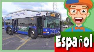 Video del Bus para Niños por Blippi Español   Videos Educacionales para Niños