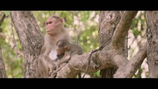 Arya Latest Action South Indian Dubbed Hindi Movie Trailer