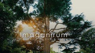 Imaginarium - CircusMASH & ArtsNK at Doddington Hall