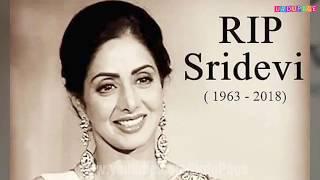 Sridevi Last Moments - sridevi last moments all videos of last night | sridevi death