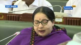 TN CM Jayalalithaa greets Muslims on Bakrid   Cauvery News
