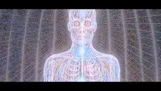 Shpongle - Divine Moments of Truth Video HD ♫