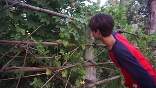 Short film / Kong You Movies / Beautiful man with Beautiful Girl (Fun)