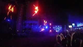 Martin Garrix - Animals (Botnek Edit) LIVE @ Electric Paradise - Punta Cana