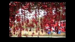 Juboti Radhe      যুবতি রাধে - আরণ্যক, গাজীপুর