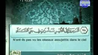 سورة النحل الشيخ صلاح بو خاطر