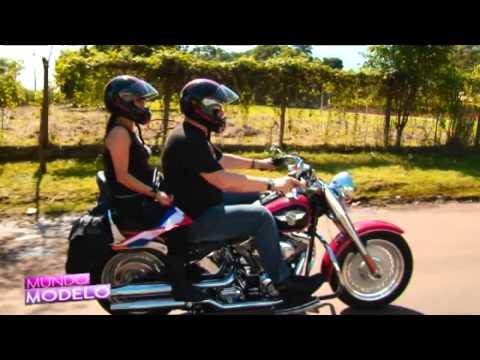 Mundo Modelo Harley Davidson