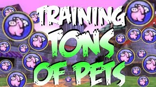 Wizard101: TONS of Pets to Mega! PERFECT PET?! (Baby to Mega)