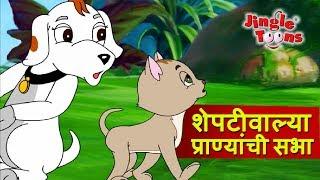 Sheptiwalya Pranyanchi Sabha | Sasa To Sasa  |ससा आणि कासव JingleToons Marathi Balgeet