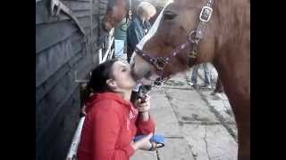 Funny Hot Girl Kissing a Horse!