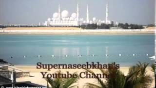 Sheikh Abdul Wali Al Arkani surah Ar Rahman الشيخ عبد الولي الاركاني