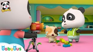 Baby Panda Photographer | Take Photos for Baby Kitten | Kids Role Play | Kids Song | BabyBus