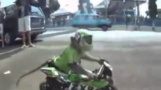 مضحك - بطل العالم في سباق الدراجات النارية صنف القردة