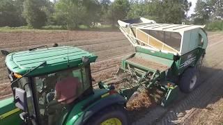 Peanut Harvest 2017