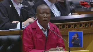 EFF Julius Malema Puts Hon Lindiwe GINGER Zulu in Her Place