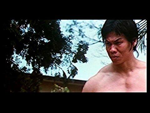 La Gran Revancha de Bruce Lee