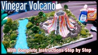 Vinegar Volcano - Fun Science Fair Project by Vanessa