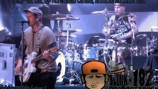 Blink-182 Live @Amnesia Rockfest 2014 Montebello Canada [Full COncert]