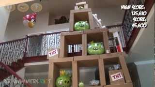 Angry Birds Air Swimmers RC RIOT! (by William Mark Corporation)