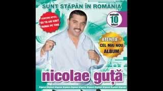 Nicolae Guta - Nu m-am schimbat (Audio oficial)