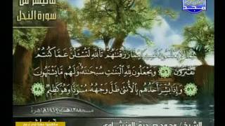 ما تيسر من سورة النحل/ المنشاوي تلاوة نادرة