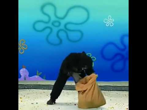 Kid Falls in Gorilla Pit x SpongeBob