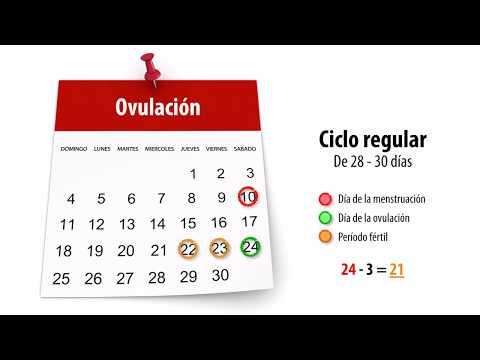 Días fértiles y cálculo de la ovulación