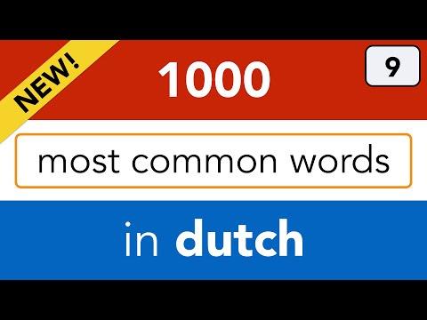 Adjectives in Dutch - Dutch for beginners - Lesson 9: Bijvoeglijk naamwoord - Leer Nederlands!