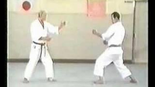 Wado Karate Techniques by Tatsuo Suzuki Sensei