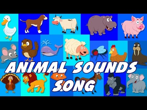 Animal Sounds Song Sounds That Animals Make Nursery Rhymes