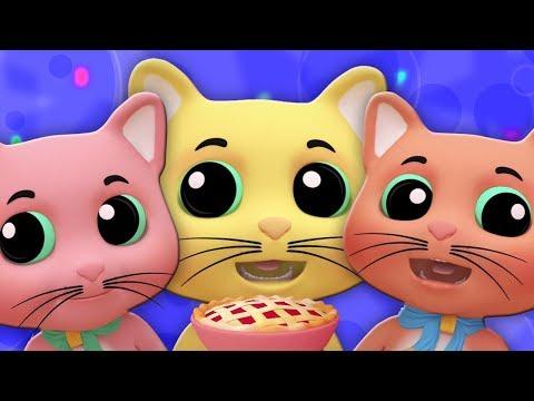 tiga anak kucing kecil lagu prasekolah puisi bayi For Babies Kids Song Three Little Kitten