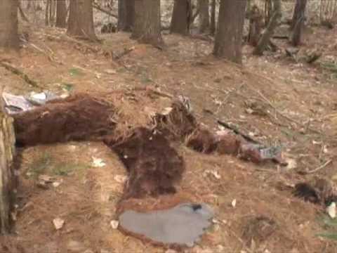 BIGFOOT FOUND DEAD