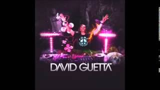 David Guetta  Showtek   Bad ft  Vassy Instrumental