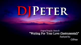 Stevie B - Waiting For Your Love (DJPeter Instrumental)
