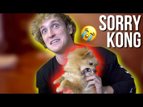 I hate hurting my dog